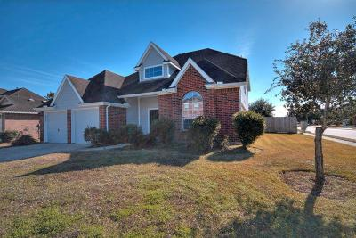 Pearland Single Family Home For Sale: 6406 Hillock Lane