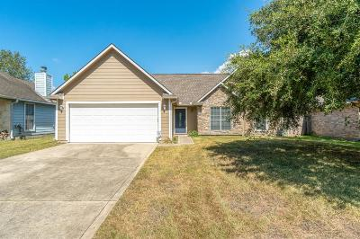Tomball Single Family Home For Sale: 1507 Ashley Court