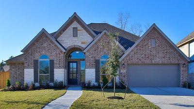 New Caney Single Family Home For Sale: 18903 Carson Glen Drive