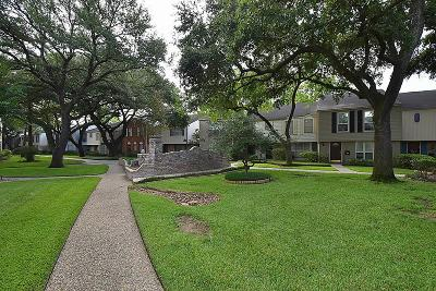 Houston Condo/Townhouse For Sale: 12993 Trail Hollow Drive