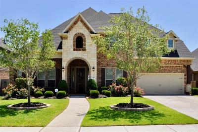 Katy Single Family Home For Sale: 2415 Haven Hill Drive