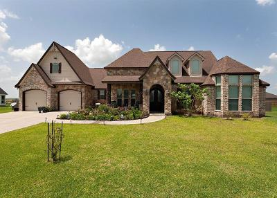 Beaumont Single Family Home For Sale: 14940 Michelle Lane