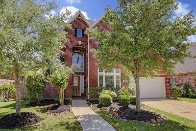 Sugar Land Single Family Home For Sale: 3811 E Orchard Springs Court