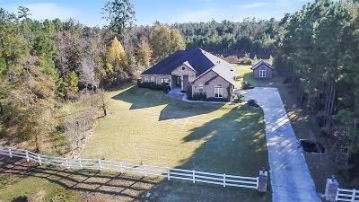 Montgomery Single Family Home For Sale: 11574 Sebastians Run