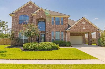 Tomball Single Family Home For Sale: 12019 Luna Falls Drive