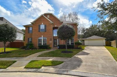 Spring Single Family Home For Sale: 6119 Tarra Firma Drive