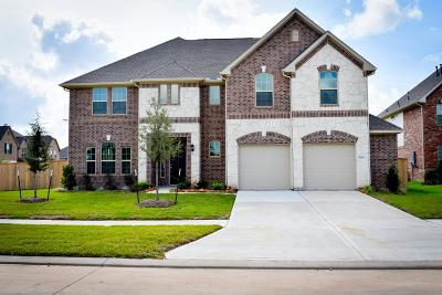 Sugar Land Single Family Home For Sale: 6214 Falls Ridge Court