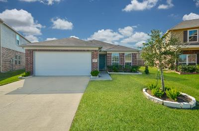 Houston Single Family Home For Sale: 3203 Dale Ridge Trail