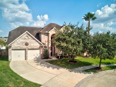Tomball Single Family Home For Sale: 12003 Sun Canyon Court