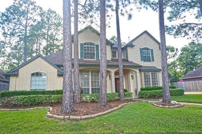 Single Family Home For Sale: 3907 Cinnamon Fern Court