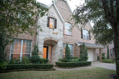 Pearland Single Family Home For Sale: 3506 Blue Spruce Trail