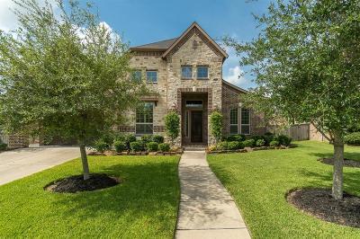 League City Single Family Home For Sale: 2585 Madison Avenue