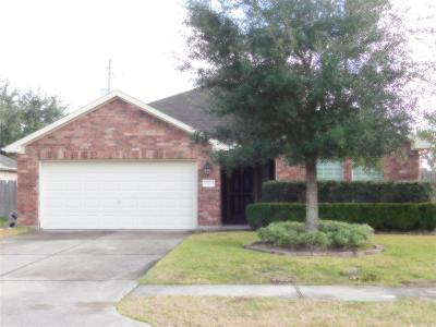 Dickinson Single Family Home For Sale: 222 Seascape Lane