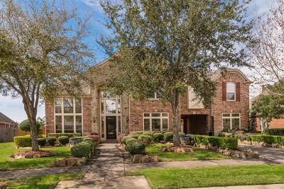 Single Family Home For Sale: 1019 Summer Cape Circle