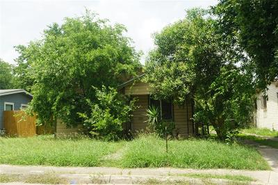 San Antonio Single Family Home For Sale: 723 Gabriel