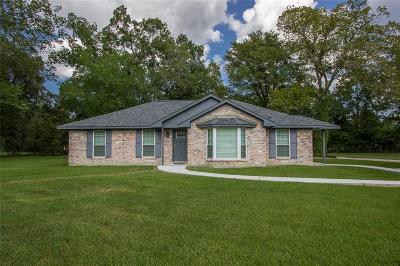 Houston Single Family Home For Sale: 1211 Diablo Drive