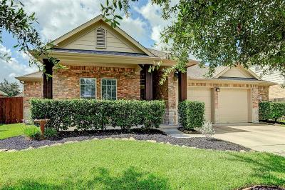 Galveston County, Harris County Single Family Home For Sale: 616 White Oak Pointe