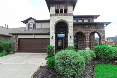 Fulshear Single Family Home For Sale: 4227 Churchill Place Ct Court