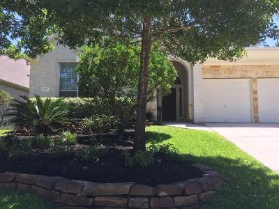 The Woodlands Single Family Home For Sale: 27 Tapestry Forest Place