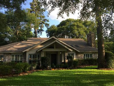 Tomball Single Family Home For Sale: 9909 Kleppel Road