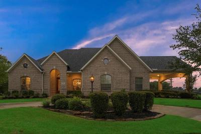 Montgomery Single Family Home For Sale: 166 Hillsborough Drive W
