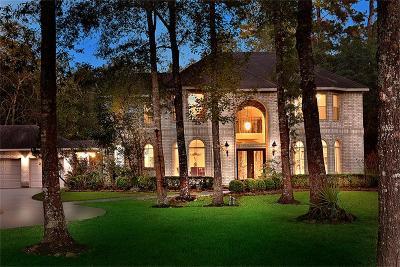 Conroe Single Family Home For Sale: 11979 White Oak Landing