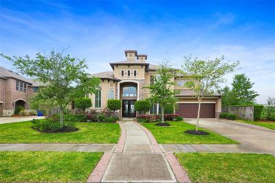 Friendswood Single Family Home For Sale: 1114 Rymers Switch Lane