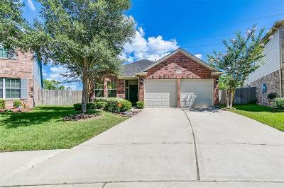 Missouri City Single Family Home For Sale: 2802 Caribou Cove Court