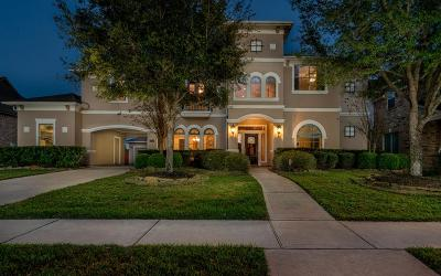 Cypress Single Family Home For Sale: 16714 S Swirling Cloud Court