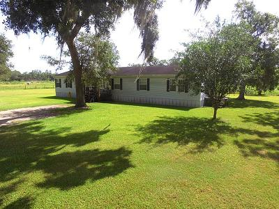 Brazoria Single Family Home For Sale: 3991 County Road 348