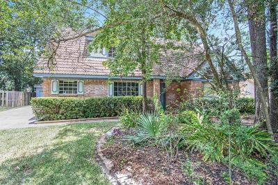 Houston Single Family Home For Sale: 3619 Hill Springs Drive