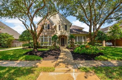 Sugar Land Single Family Home For Sale: 29 Turtle Creek Manor