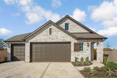 Humble Single Family Home For Sale: 12303 Clunie Pass Drive