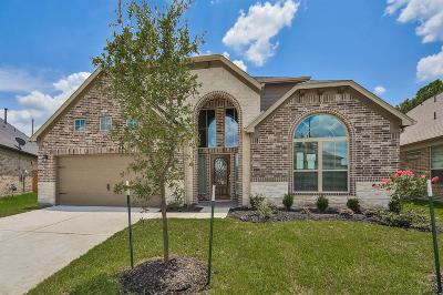 Houston Single Family Home For Sale: 4007 Guild Meadows Drive