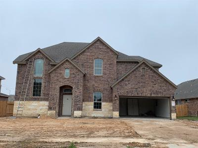 Pearland Single Family Home For Sale: 2803 S Galveston Avenue