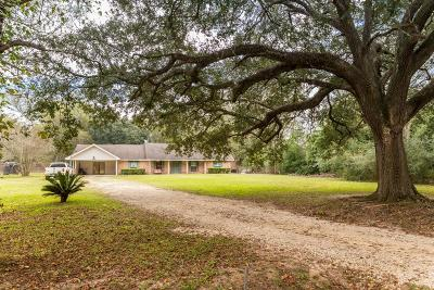 Huffman Single Family Home For Sale: 24314 Anderson