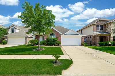 Houston Single Family Home For Sale: 21311 Drifting Oaks Drive