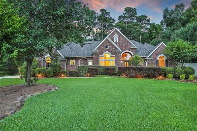 Conroe Single Family Home For Sale: 8960 Fallsbrook Court