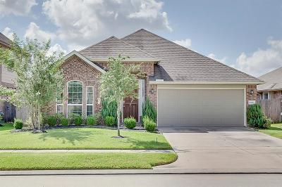 Single Family Home For Sale: 13011 Thorn Valley Court