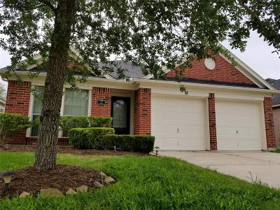 Manvel Single Family Home For Sale: 32 Signal Hill Drive
