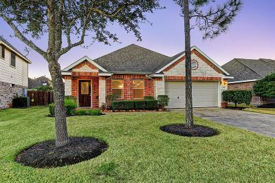 Rosharon Single Family Home For Sale: 13607 Manor Crest Lane