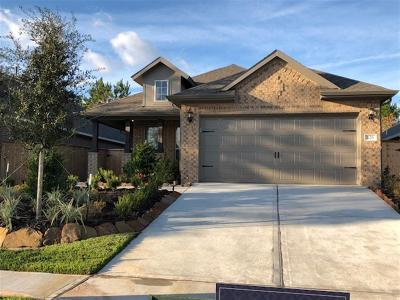 Montgomery Single Family Home For Sale: 126 Purple Prairie Trl