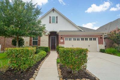 Sugar Land Single Family Home For Sale: 1707 Ralston Branch Way