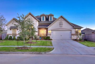 Fort Bend County Single Family Home For Sale: 30107 Haven Trace Drive