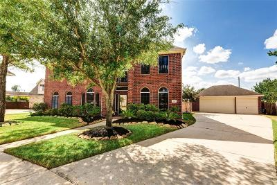 Single Family Home For Sale: 9527 Cat Tail Spring Court