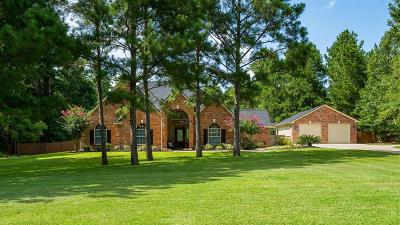 Montgomery Single Family Home For Sale: 15536 Victorias Way Drive