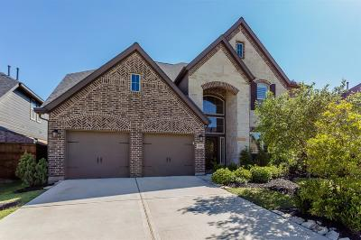 Fulshear Single Family Home For Sale: 28110 Twin Knolls Lane