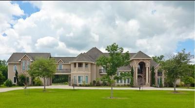 Missouri City Single Family Home For Sale: 9005 Thompson Lake Drive