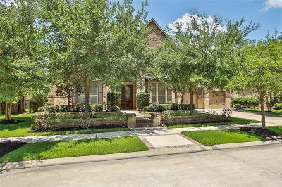 Cypress Single Family Home For Sale: 18906 Cove Vista Lane