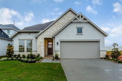 Missouri City Single Family Home For Sale: 5426 Merlins Trail